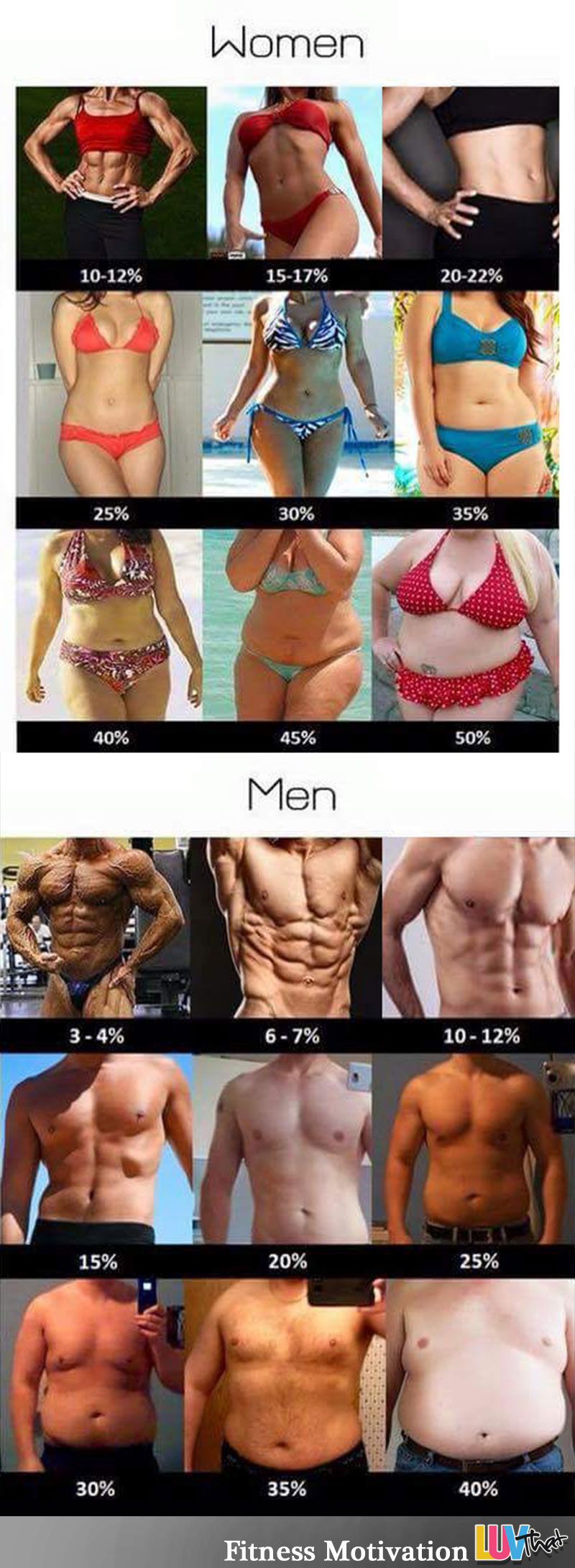 Visual Truth Of Body Fat Percentages Chart – LuvThat