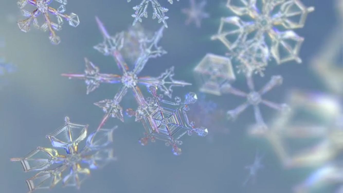 frozen planet close up snowflakes
