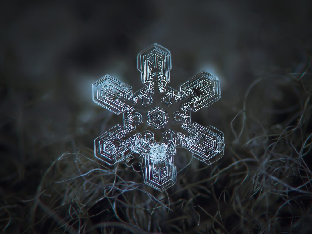 pretty snowflake photo