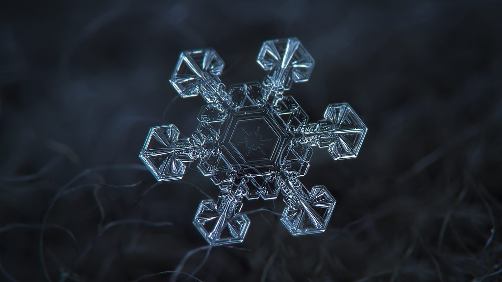 snowflakes close up photography