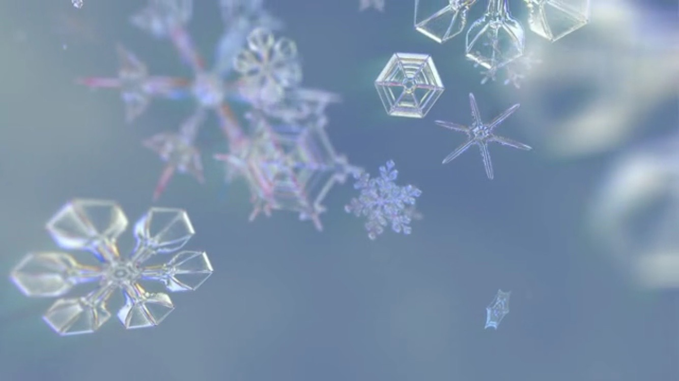 micro photography of snowflakes wwwimgkidcom the